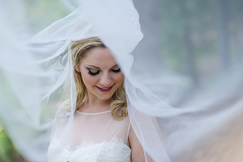 bride portrait under veil